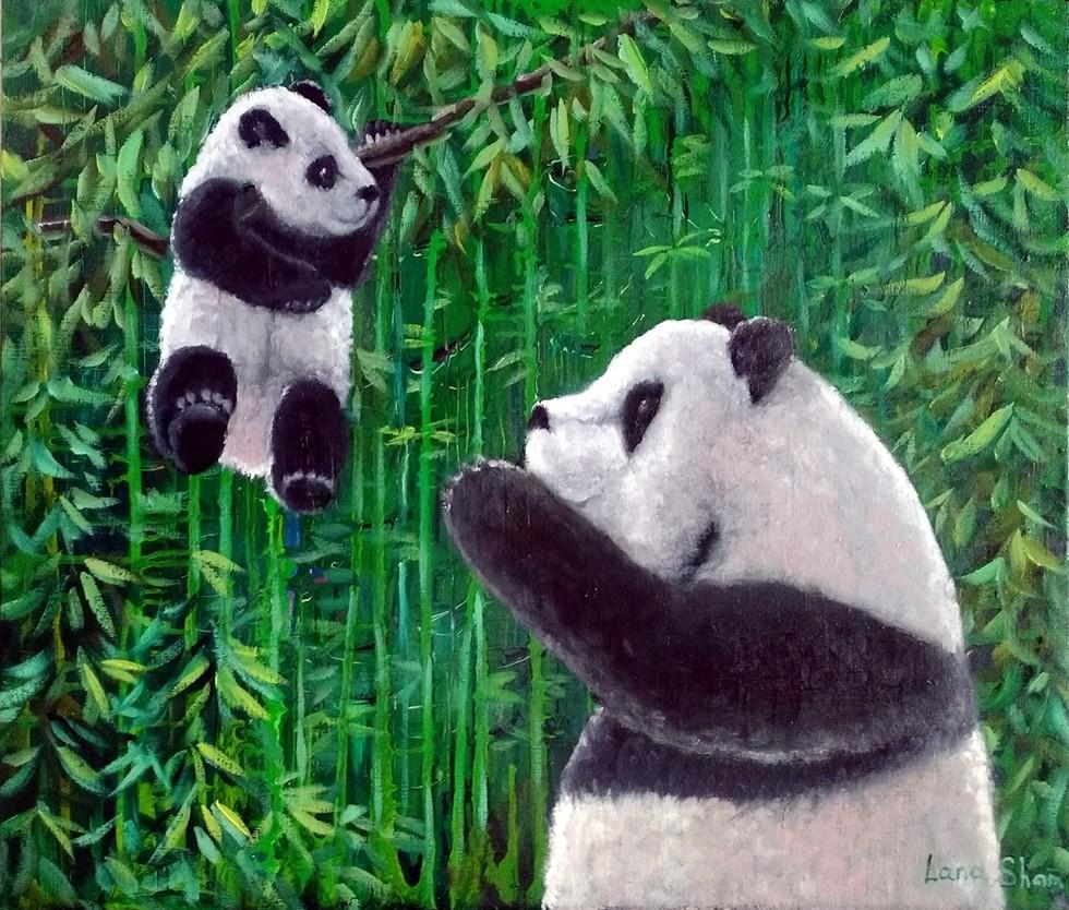 Маленькая любовь Большой панды, 60х70