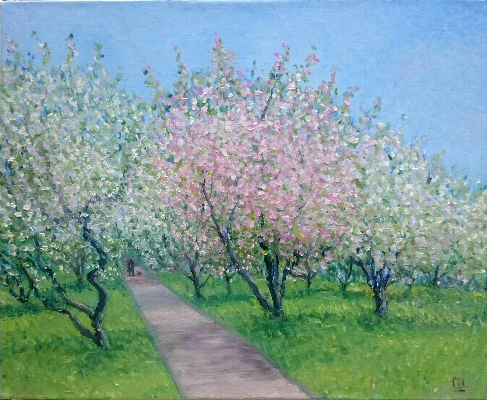 Коломенское. Яблони цветут, 50×40